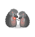 couple of hedgehogs hedgehog giving a flower to vector image