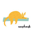 cute orange aardvark on white background vector image