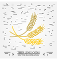 Ears of grain thin line design Ears of grain pen I vector image