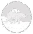 Polar Bears vector image vector image