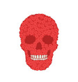 stylized red verbena skull on white background vector image vector image