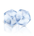 two ice cubes isolated on the white background vector image vector image