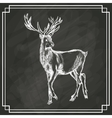 white deer sketch dark background vector image