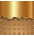 abstract gold metal background vector image vector image