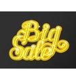Big sale in supermarket concept of e-shopping vector image vector image