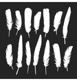 Feathers silhouettes set vector image vector image