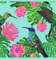 floral tropical seamless pattern with humming bird vector image vector image