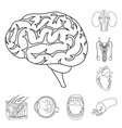 internal organs of a human outline icons in set vector image