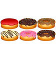 Set of different toppings donuts vector image