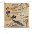 Australia - Pictures of Life Animals vector image