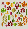 autumn minimalist abstract floral background vector image vector image