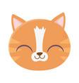 cute cat face feline cartoon animal icon vector image