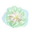 datura flower vector image vector image