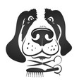 dog grooming symbol for business vector image