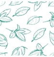 Eco peppermint tea fresh mint leaves menthol vector image vector image