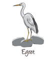 egret color vector image vector image