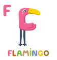 f is for flamingo letter f flamingo cute animal vector image vector image