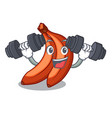 fitness red banana isolated on the mascot vector image vector image