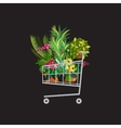 Florist shopShopping cart with plantsFlower vector image