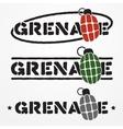 Grenade logo vector image vector image