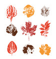 grunge colored leaves stamps vector image vector image