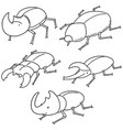 set of beetle vector image vector image