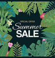 tropical summer sale banner vector image vector image