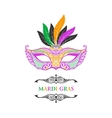 Beautiful mask of lace Mardi Gras vector image vector image