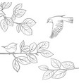 bird at tree branch vector image vector image