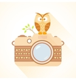 camera and owl vector image