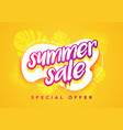 colorful abstract summer sale banner template vector image vector image