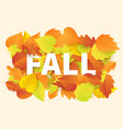 fall banner template with bright autumn leaves vector image vector image