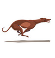 minimalist image of a running greyhound vector image vector image