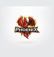 phoenix mascot character logo design vector image vector image