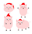 pig piglet set cute cartoon funny bacharacter vector image vector image