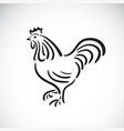 rooster or cock design on a white background vector image