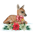 watercolor sweet fawn with christmas decorations vector image