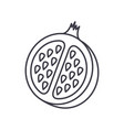 pomegranate line icon sign vector image