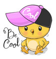 cute chicken with a pink cap vector image