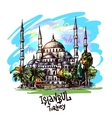 Istanbul blue mosque vector image