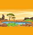 scene with crocodiles in pond vector image vector image