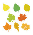 set of isolated multicolor single leaves with vector image