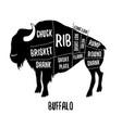 buffalo cutting charts vector image