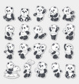 cute and funny panda vector image vector image
