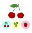 Fruit Icons Cherry Gooseberry Strawberry vector image vector image