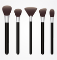 Set of Cosmetic Brushes for Make up vector image vector image