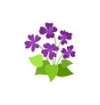 spring flowers floral elements blooming vector image vector image