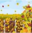 vineyard autumn background fall decors vector image vector image