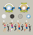 Volleyball Player and Graphic Elements vector image vector image