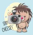 cute cartoon hedgehog with a camera vector image vector image